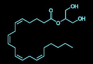cbd-explained-endocannabinoid-2-ag