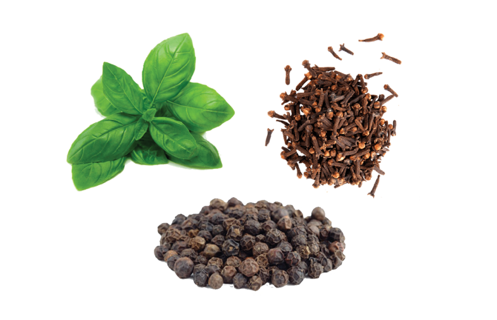 terpene-caryophyllene-basil-cloves-black-pepper-curedbynature
