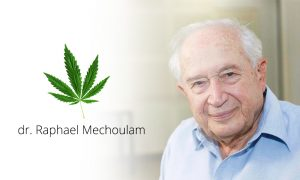 cannabis_oil-dr-Raphael-Mechoulam-CuredByNature